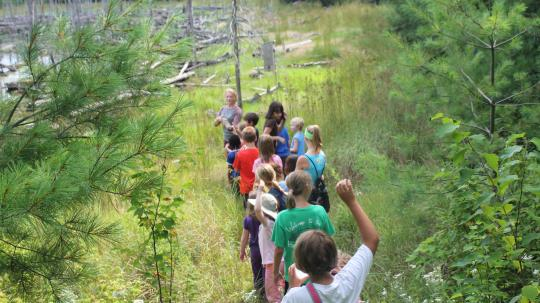Children on a guided hike in the woods