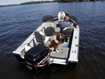 Get your dog on the water