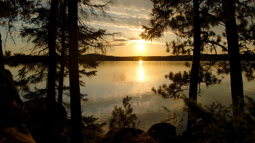 Lake Vermilion and pine trees at sunset.