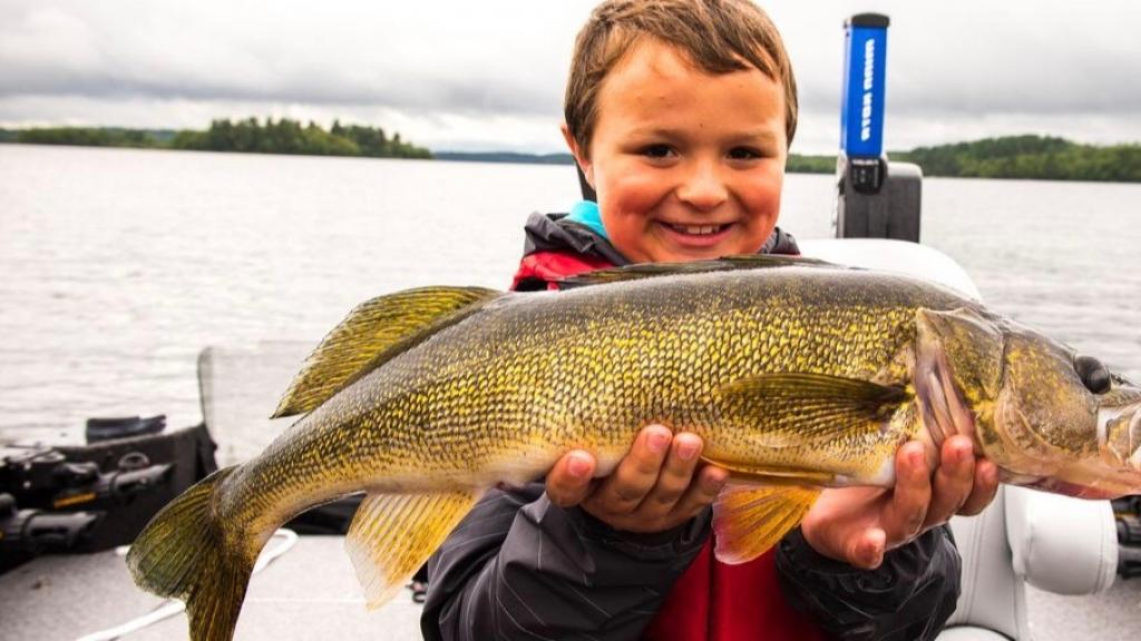 Boy proudly holding walleye on Lake Vermilion
