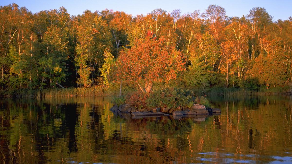 Fall colors on Lake Vermilion.